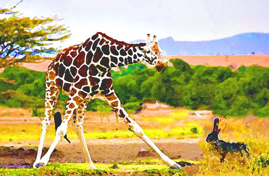 giraffe-hare2